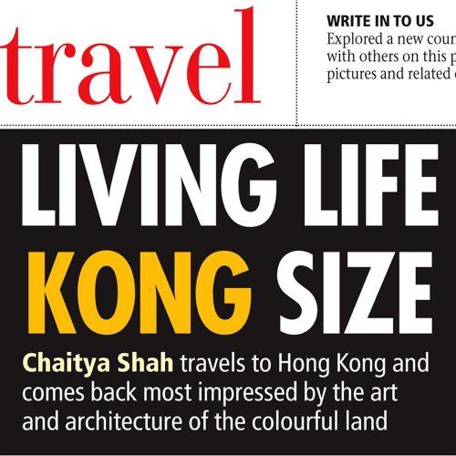 Living Life Kong Size