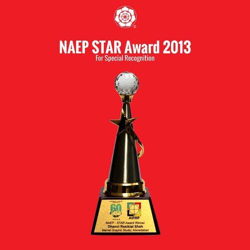 NAEP Star Award 2013